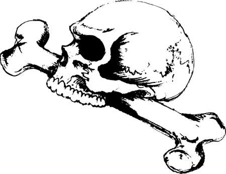 hallows: This skull and bone is perfect for your scary Halloween design.   Illustration
