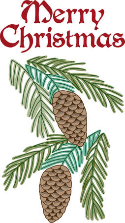 These beautiful pine cones are a perfect design for this winter.    Illustration