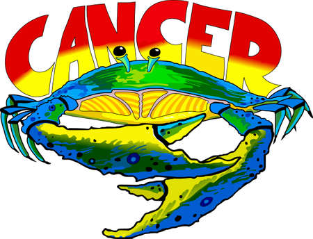 cancer crab: Display your astrological sign with this beautiful crab for the sign Cancer.   Illustration