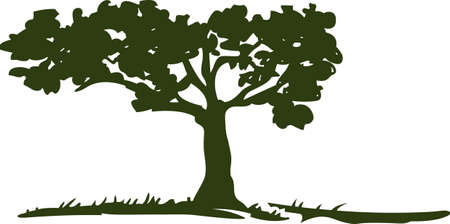 This beautiful image is perfect for the genealogist to display their family tree.   Çizim