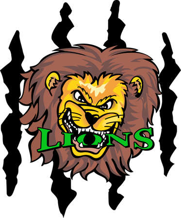 mountain lions: Show your team spirit with this Lions  .  Everyone will love it! Illustration
