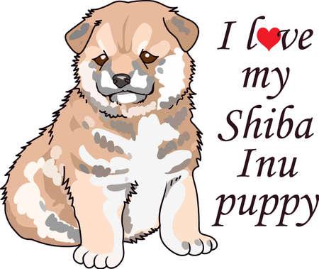 Take your Shiba Inu everywhere you go.  Illustration