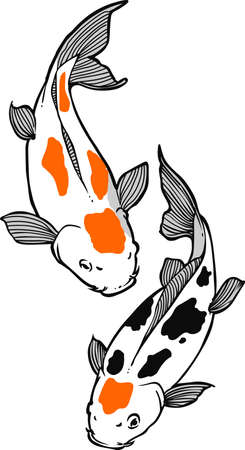 nishikigoi: The koi is a symbol of a persons ability to have high expectations and for happiness.