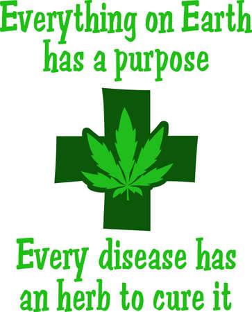 地球上のすべての目的があります。 すべての病気は、それを治療するハーブ。