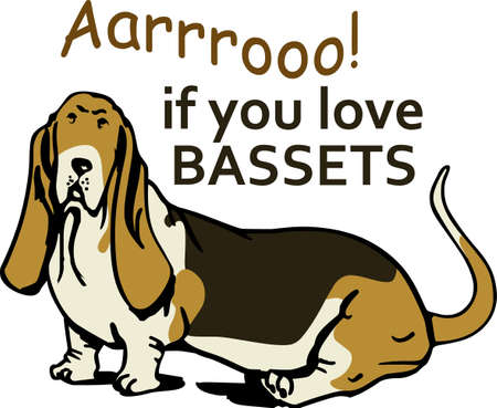 I love my basset hound.