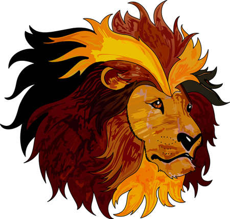 Display your astrological sign with this beautiful lion for the sign Leo.  일러스트