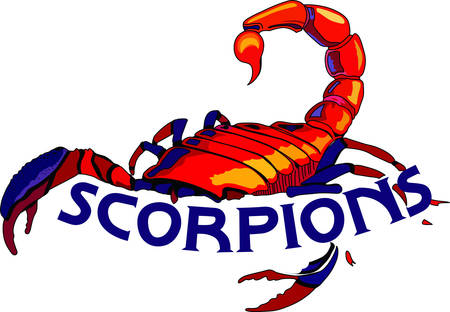 arthropods: Display your astrological sign with this beautiful scorpion for the sign Scorpio.