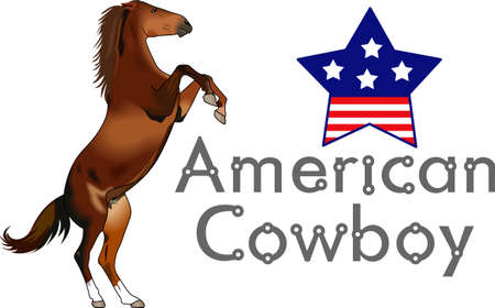 colt: Yee haw!  This is a cute design for your cowboy.  He will love it! Illustration