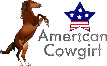 filly: Yee haw!  This is a cute design for your cowboy.  He will love it! Illustration
