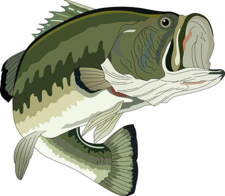 Non dimenticate questo disegno carino quando si va a pesca. Questo disegno è perfetto da portare con voi quando andate. Ognuno lo ameranno!