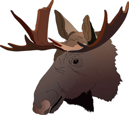 moose hunting: Life is simple, go hunting!  Get matching items for everyone in your group, they will love it!