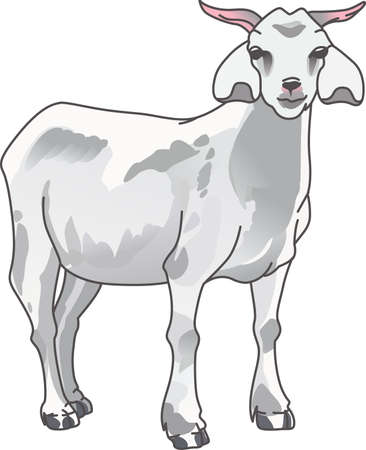 capra: The goat is full of attitude and sure to bring a laugh to all.