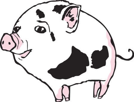 sow: The piglet is full of attitude and sure to bring a laugh to all.  Illustration
