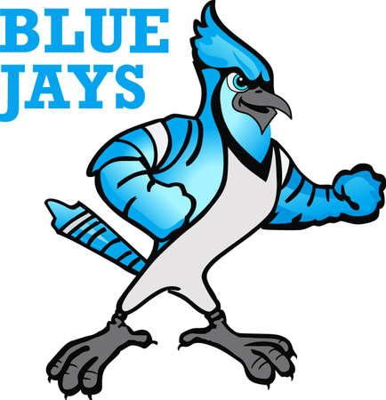 このブルー ・ ジェイ ・とチームの精神を示します。 誰もがそれを愛する!  イラスト・ベクター素材