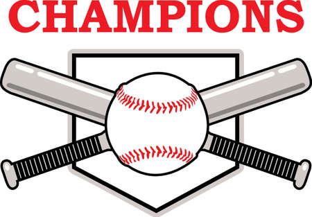 teamsport: You spend hours dreaming, practicing the sport and playing on the baseball field.  Baseball is life!  Your baseball player will love this!
