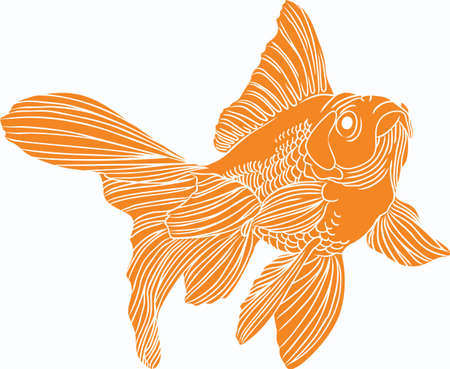 fantail: The goldfish is a popular fish in an outdoor pond.