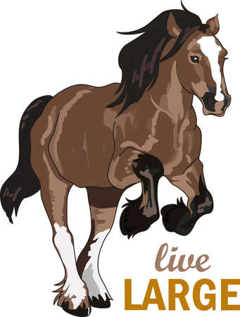 This graceful horse with the wind blowing its mane will be beautiful on a shirt, vest or jacket.  矢量图像