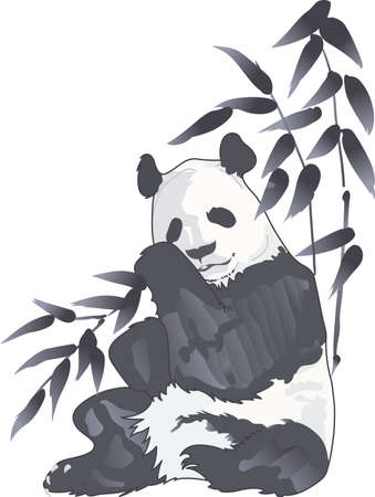 동물원을 방문하는 것은 재미 있지만, 팬더 베어를 보는 것은 매우 특별합니다. 일 년 내내 기억하십시오.