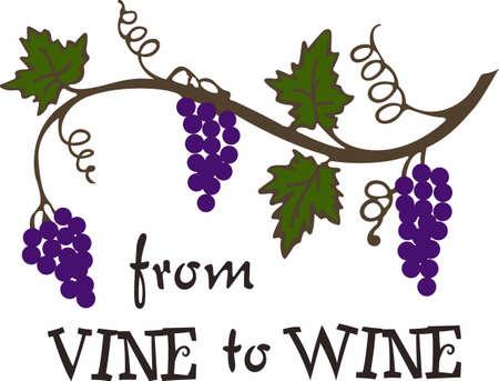 Quel est votre vin préféré Rouge, blanc ou rougir vins sont parfaits pour votre prochaine fête de Bunco. Ils vont adorer! Banque d'images - 45170848