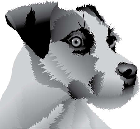 jack russell: My best friend is hard at work for me.  Show everyone how much your dog means to you.  They will love it! Illustration