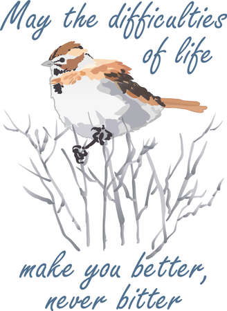 Birds are fascinating animals.  This is a perfect gift for a favorite birder you know.  They will love it!