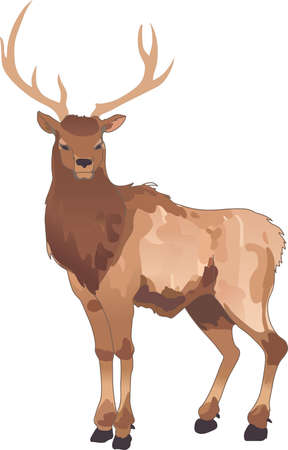 caribou: Life is simple, go hunting!  Get matching items for everyone in your group, they will love it.