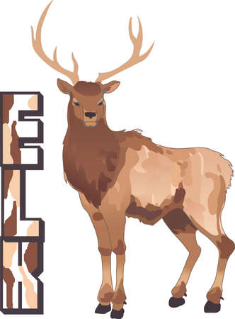 wapiti: Life is simple, go hunting!  Get matching items for everyone in your group, they will love it.
