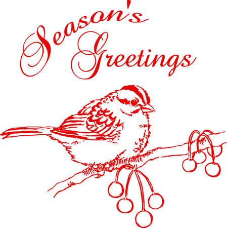 Vogels zijn fascinerende dieren. Dit is een perfecte gift voor een favoriete vogelaar die je kent. Ze zullen love it!