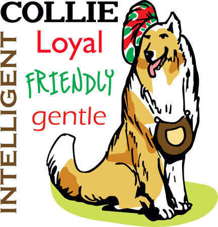 I love my Collie.  This is a perfect design for dog owners from Great Notions. 向量圖像