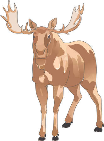 caribou: Life is simple, go hunting!  Get matching items for everyone in your group, they will love it!