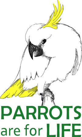 birdie: The cockatoo is a beautiful bird.  This design makes a great gift. A beautiful design from Great Notions.