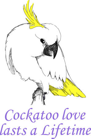 cockatoo: The cockatoo is a beautiful bird.  This design makes a great gift. A beautiful design from Great Notions.