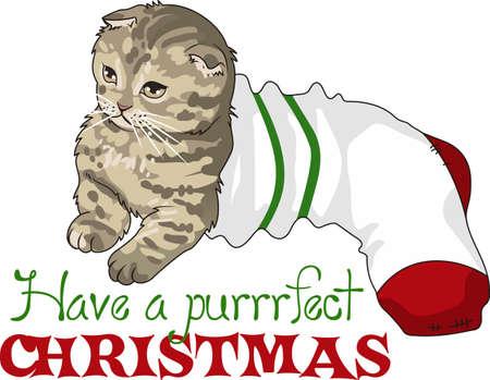 Nehmen Sie Ihre Katze, wo Sie hinkommen. Ein niedlicher Entwurf von Groß Begriffe. Standard-Bild - 45446804