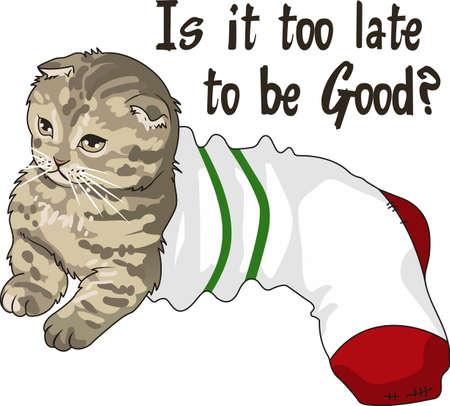 llegar tarde: Lleve a su gato a dondequiera que vayas. Un diseño lindo de grandes conceptos. Vectores