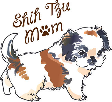 pure bred: Have a shih tzu with you always with this cute puppy.