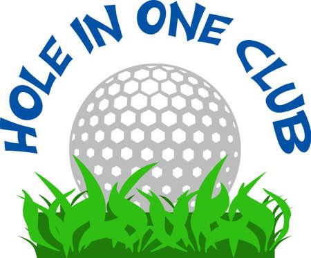 골퍼는 골프 공을 좋아할 것입니다.