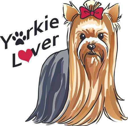 Have a cute yorkie with you always with this little dog.