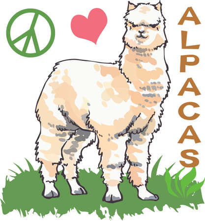 those: This cute alpaca is perfect for those raising these animals.