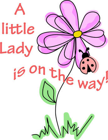 lady beetle: A pretty flower and ladybug are a gardeners friend.