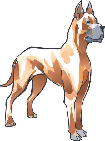 dane: Have a great dane with you always with this dog. Illustration