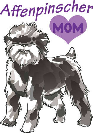 pure bred: Have a affenpinscher with you always with this little dog.