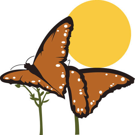 Pretty butterflies are a great accent for a garden lover.