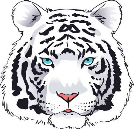 Tigers are a majestic animal. Illustration