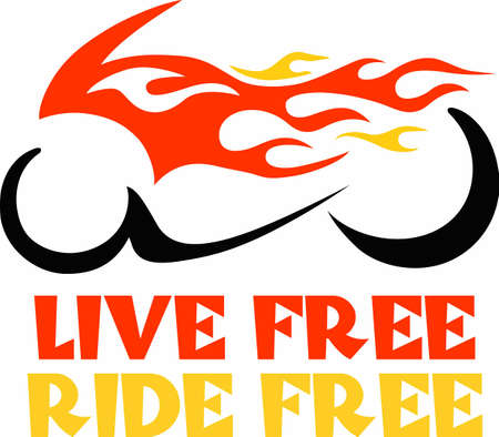 cruiser: Enjoy the freedom of the road and great memories.  Include this with your memories.  Everyone will love it!