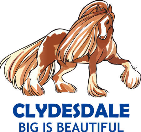 An elegant clydesdale for horse lovers.