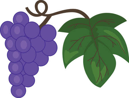 cluster: This wonderful cluster of red wine grapes stands out and makes a great gift for the connoisseur.  Pick those designs by Great Notions.
