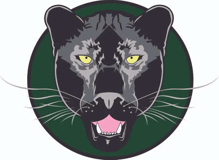 puma cat: Show your team spirit with this panther logo.  Everyone will love it! Illustration