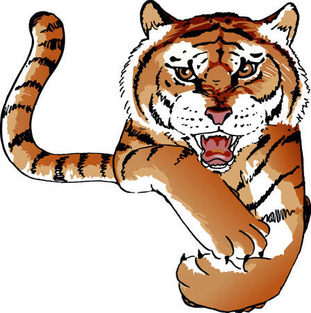 Show your team pride with a tiger mascot.