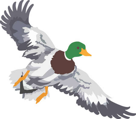 Put a beautiful duck on caps and clohting. Ilustrace