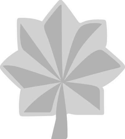 solider: Have military pride with this insignia.